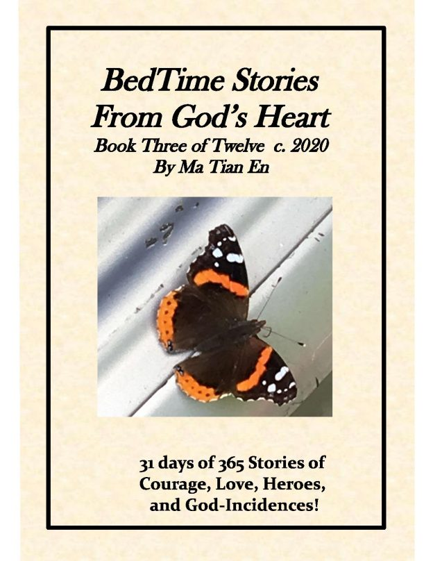BedTime Stories From God's Heart Book 3